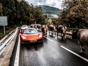 autoreis Dolf Dekking door de Pyreneeën